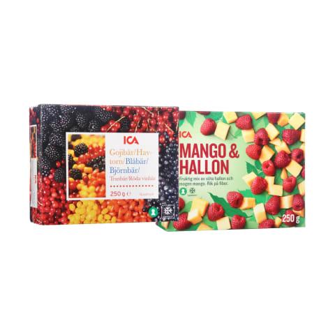 Šaldytoms uogoms ir vaisiams ICA, 250 g (3 rūšys)